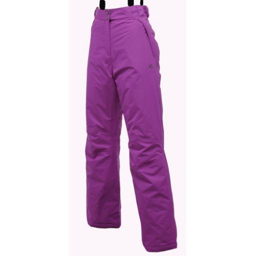 DARE2B HEADTURN PLUM Ski Pants Short Leg