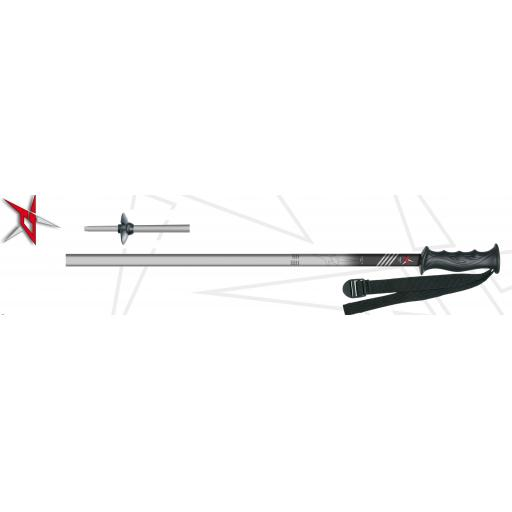 PAIR of SKI POLES-PRICE FOR CUSTOMERS PURCHASING SKIS ONLY