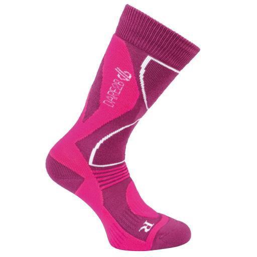 Dare2b Womens CONSTRUCT FUSCHIA/CYBER PINK Technical ski sock Sizes 3-5, 6-8
